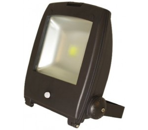 50W IP65 Rated High Power Energy Saving Warm White LED Floodlight